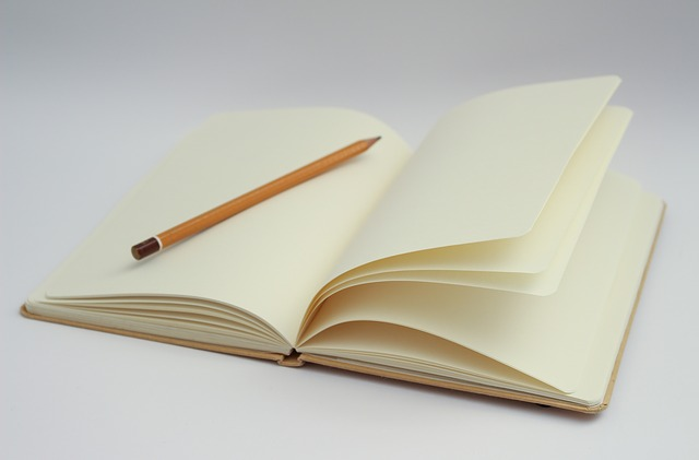Getting a Book Published:  How to Find a Literary Agent